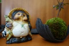 La mascotte a son kokedama !